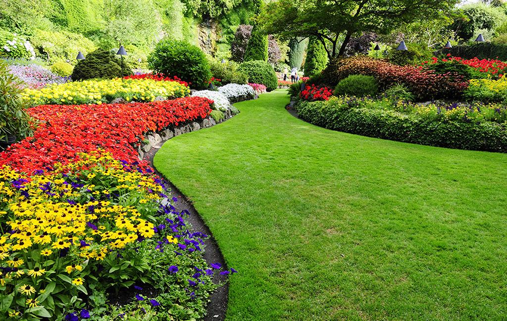 Coltiva la tua passione per il giardinaggio